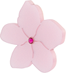 Toolally Blossoms Stud App Image